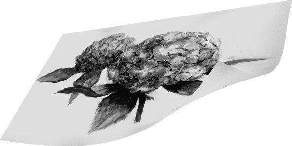 グレースケールの紫陽花