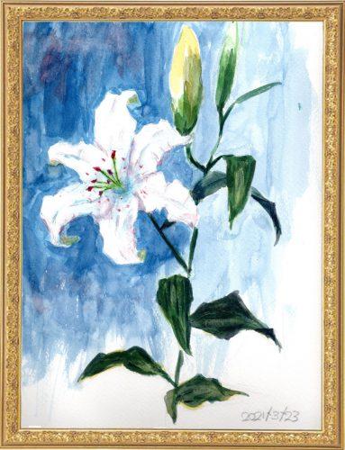 白ユリ(painted on Mar.23,2021)